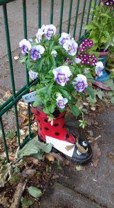 pic 2 garden